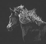 Horse study - pastel on paper, 8 x 16  Photo reference Karen Broemmelsick. 3-2019