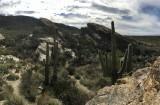 Arizona - February 2020