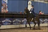madison_classic_horse_show_2019