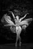 Ballerina | Ballettstudio Ost