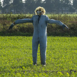 vogelverschrikkers - scarecrows - épouvantails - espantalhos