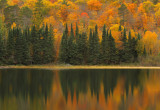 Itasca State Park: Colors of Minnesota