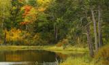 Pond_off_Deer_Park_Trail_copy.jpg