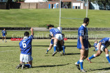 Newtown Rugby League 2003