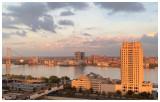 View from my window.jpg