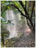 Fairchild Gardens.jpg