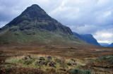 Scotland13