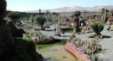 Cactus Garden,Lanzarote3