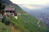 Col de Forclaz,Rhone Valley