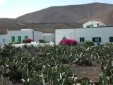 in village Arrieta,Lanzarote