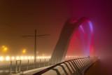Le pont BEATUS RHENANUS entre Strasbourg en France et Kehl en Allemagne