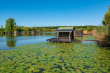 L'étang de Welschhof