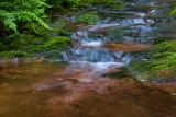Balade au fil de l'eau