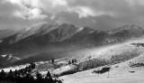 Black and White Montana