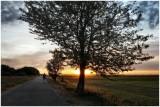 Nature & Rural Life  2020