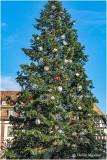 Le grand sapin de Noël 2019 à Strasbourg (F-Alsace)