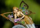 FairyFrntDeck061319.jpg