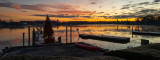 xmas tree sunrise 2 on  December 14 2020 covid day 274-1030269.jpg