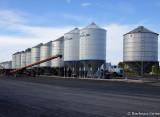 Line up of new grain storage silos, near Benalla