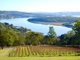 The Tamar River Valley, Tasmania  2021