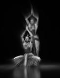 dance in motion_XE34020.jpg