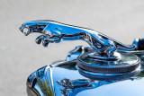 50 Jaguar MK V