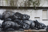 Created by ROA.  Gent - Belgium