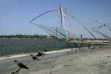 Cochin IMG_7509.jpg