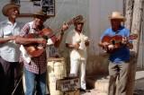 Trinidad Los Pinos Gold 200 02268_resultat.jpg
