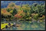 L'Automne à Arashiyama.
