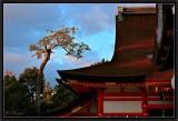 Sunset on Yasaka Shrine.