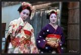 Kon Nichi Wa(*)