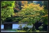 Autumn in Nanzen-Ji.