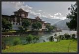 Punakha Dzong and River Ma.