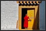 The Golden Door.
