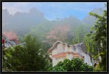Pelling. Morning Mist.