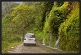 The Road to Pelling.