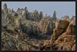 Forêt de Granit.