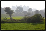 Maharajah's Fields.
