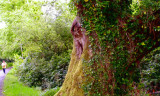 Possible leprechaun sighting in Killarney