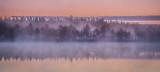 Misty sunrise, Seitseminen National Park