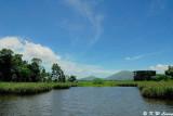Wetland Park DSC_2443