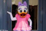 Daisy Duck 01