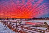 Winter Sunrise P1380776-82