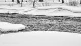 Snowscape P1060445