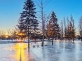 Centennial Park 'Ice Rink' P1080118-24