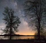 Galactic Core Between Trees P1400189