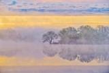Otter Creek In Sunrise Fog P1400806