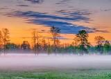 Ground Fog At Sunrise P1410348-54