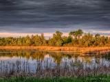 Irish Creek At Sunrise P1150797-9